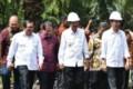 Canangkan Program PSR, Presiden Jokowi Tanam Sawit Di Serdang Bedagai