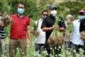 Gubernur Sumut Apresiasi Petani yang Tetap Produktif di Tengah Pandemi